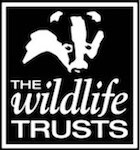 hampshire wildlife trust
